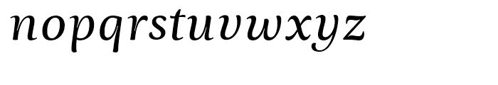 Ninfa Serif Italic Font LOWERCASE