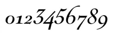 Nicolas Italic Font OTHER CHARS