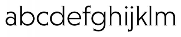 Niveau Serif Light Font LOWERCASE