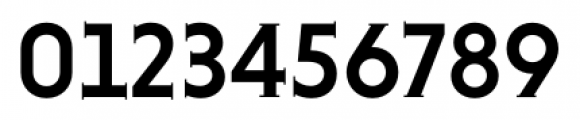 Niveau Serif Medium Font OTHER CHARS