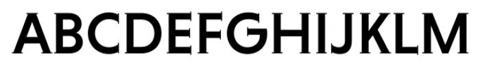 Niveau Serif Medium Font UPPERCASE