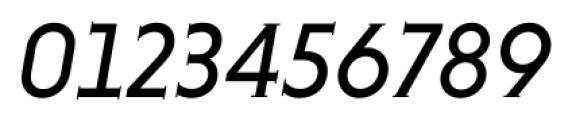 Niveau Serif Regular Italic Font OTHER CHARS