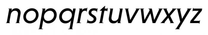 Niveau Serif Regular Italic Font LOWERCASE