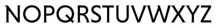 Niveau Serif Regular Small Caps Font UPPERCASE