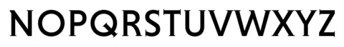 Niveau Serif Regular Small Caps Font LOWERCASE