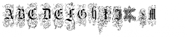 Nice Initials Text Two Font UPPERCASE