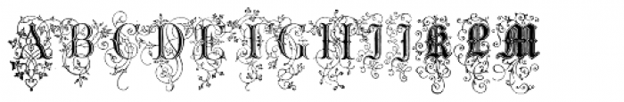 Nice Initials Text Font UPPERCASE