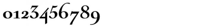 Nicolas Cochin Black Font OTHER CHARS