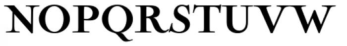 Nicolas Cochin Pro Black Font UPPERCASE