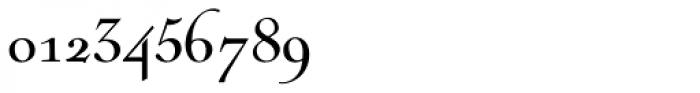 Nicolas Cochin Pro Regular Font OTHER CHARS
