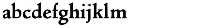 Nicolas Jenson SG ExtraBold Font LOWERCASE