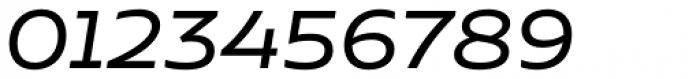 Niemeyer Regular Italic Font OTHER CHARS