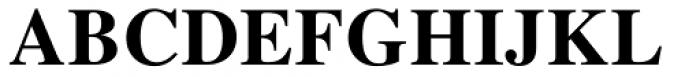 Nimbus Roman Korean Bold Font UPPERCASE