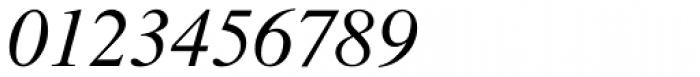 Nimbus Roman No 9 L Italic Font OTHER CHARS