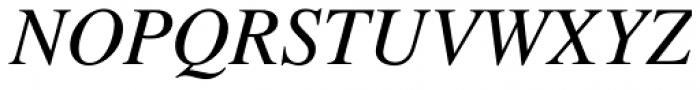 Nimbus Roman No 9 L Italic Font UPPERCASE