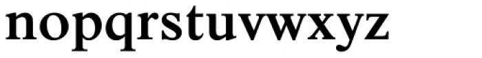 Nimbus Roman No 9 Medium Font LOWERCASE