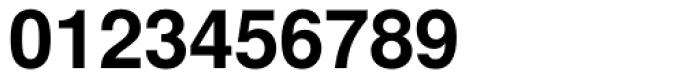 Nimbus Sans CHS Bold Font OTHER CHARS