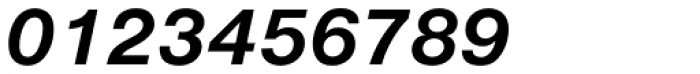 Nimbus Sans D Bold Italic Font OTHER CHARS