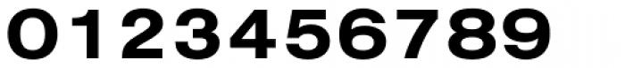 Nimbus Sans D Ext Bold Font OTHER CHARS