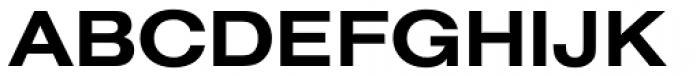 Nimbus Sans D Ext Bold Font UPPERCASE