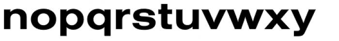 Nimbus Sans Extended Bold Font LOWERCASE