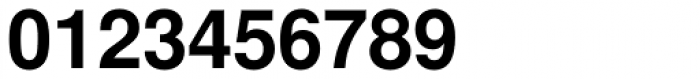 Nimbus Sans L Bold Font OTHER CHARS