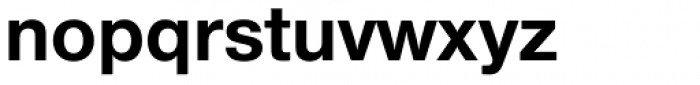 Nimbus Sans Novus Bold Font LOWERCASE