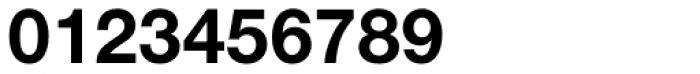 Nimbus Sans Novus D Bold Font OTHER CHARS