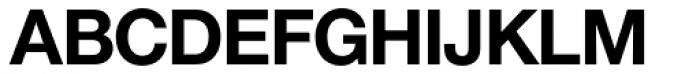 Nimbus Sans Novus D Bold Font UPPERCASE