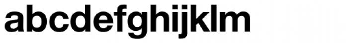 Nimbus Sans Novus D Bold Font LOWERCASE