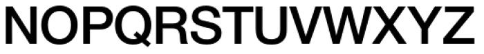 Nimbus Sans Novus D SemiBold Font UPPERCASE