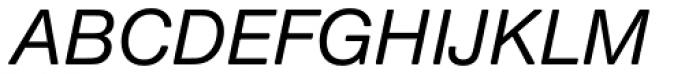 Nimbus Sans Round Medium Italic Font UPPERCASE