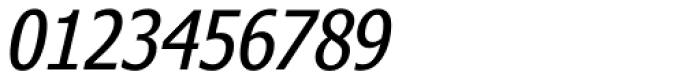 Nina Italic Font OTHER CHARS