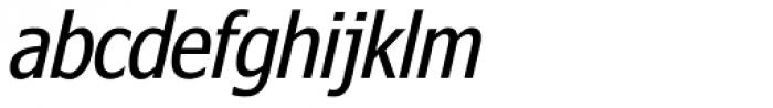 Nina Italic Font LOWERCASE