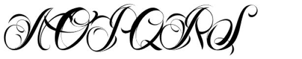 Nina Script Pro Font UPPERCASE