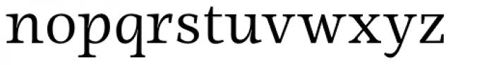 Ninfa Serif Book Font LOWERCASE