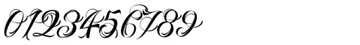 Nino Script Font OTHER CHARS