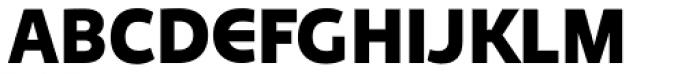 Niva Alt Black Font UPPERCASE