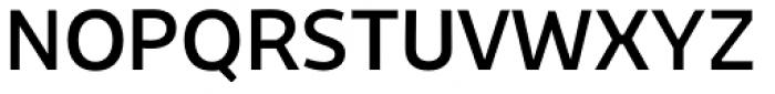 Niva Alt Regular Font UPPERCASE