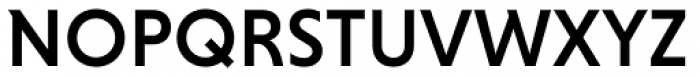 Niveau Grotesk Medium Font UPPERCASE