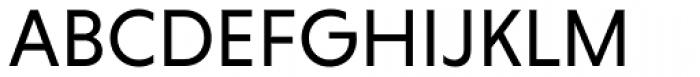 Niveau Grotesk Regular Font UPPERCASE