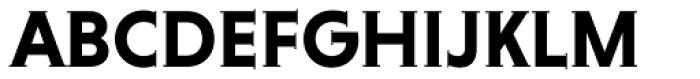 Niveau Serif Bold Font UPPERCASE