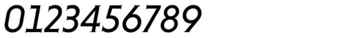 Niveau Serif Italic Font OTHER CHARS