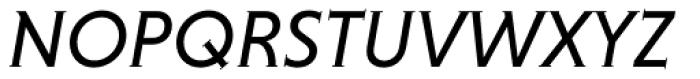 Niveau Serif Italic Font UPPERCASE