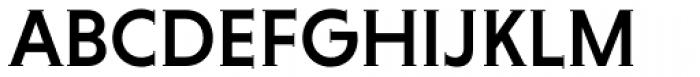 Niveau Serif Medium Small Caps Font UPPERCASE