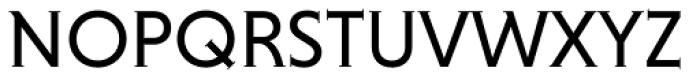 Niveau Serif Small Caps Font UPPERCASE