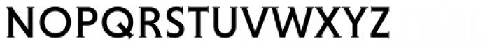 Niveau Serif Small Caps Font LOWERCASE