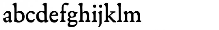 NixRift Font LOWERCASE