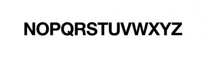 Nimbus Sans Novus Complete D Bold Font UPPERCASE