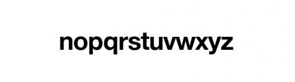 Nimbus Sans Novus Complete D Bold Font LOWERCASE